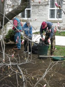 Yard cleanup, April 2011