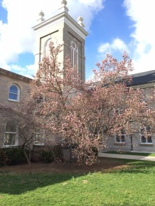 Early Spring at First Church